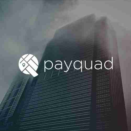 Logo design, Website design and development, custom admin portal to manage users and payments.